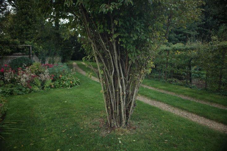 Hemingford-manor-9