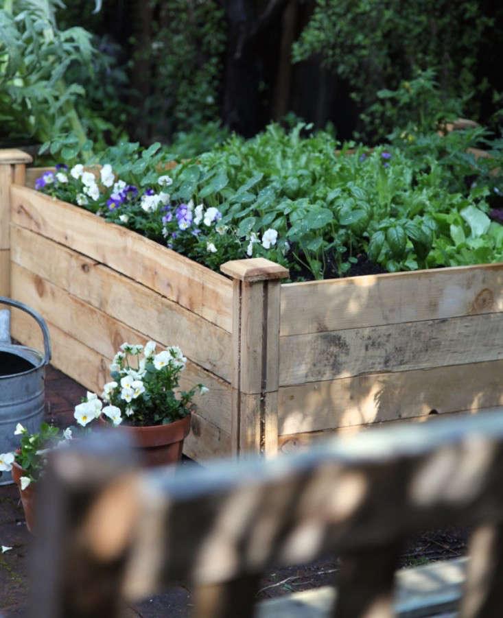 Home-Depot-Planting-Vegetable-Garden-Gardenista-11a