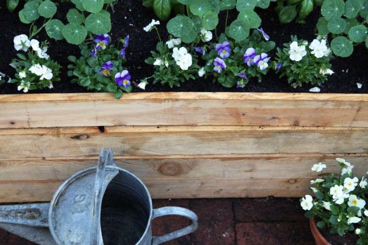 Home-Depot-Planting-Vegetable-Garden-Gardenista-14a