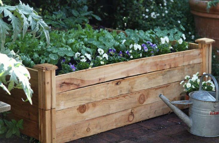 Home-Depot-Planting-Vegetable-Garden-Gardenista-9a