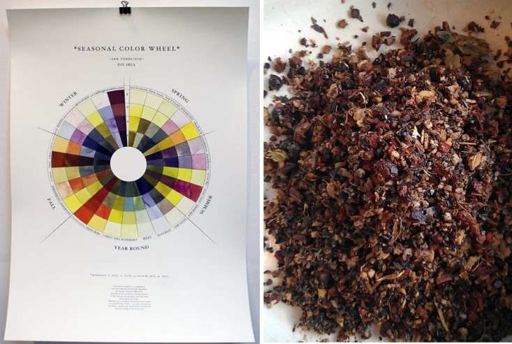 Homestead Apothecary Color Wheel of Season Dyes and Root Beer Compost, Gardenista