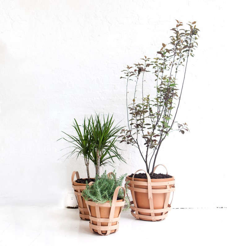 IntroNY-Strap-Planters-May-20141