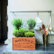 Isabelle-Palmer-The-House-Gardener-Gardenista-07
