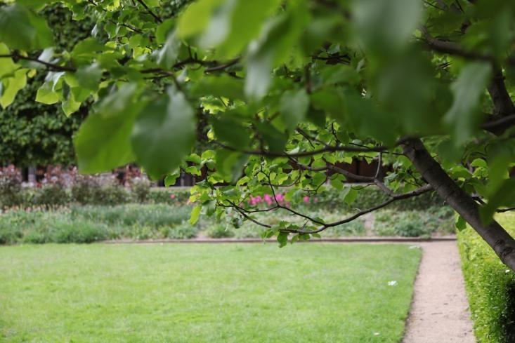 Jardins-du-Palais-Royal-Gardenista-10-gardenista