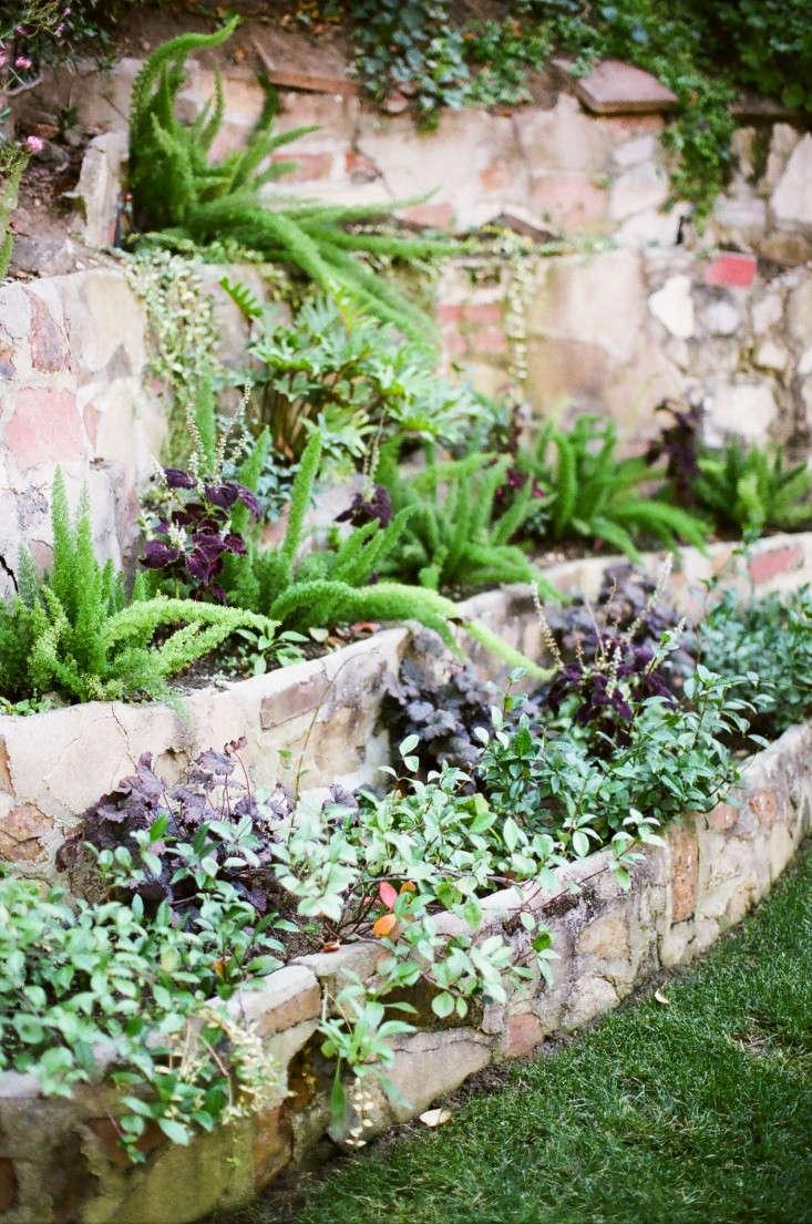 Kathleen-Whitaker-Echo-Park-Garden-Stepped-Planting-Wall-Gardenista-02