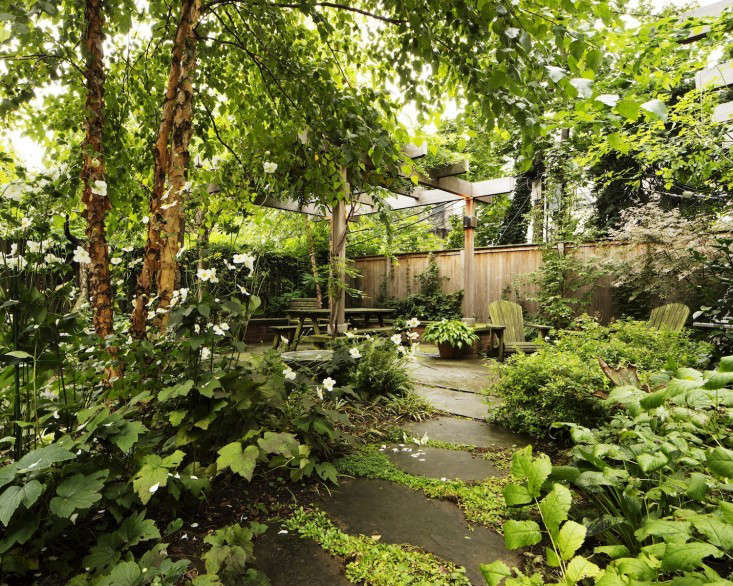 Kim-Hoyt-Architect-Boerum-Hill-Garden-with-Lush-Trees-and-Foliage-Gardenista
