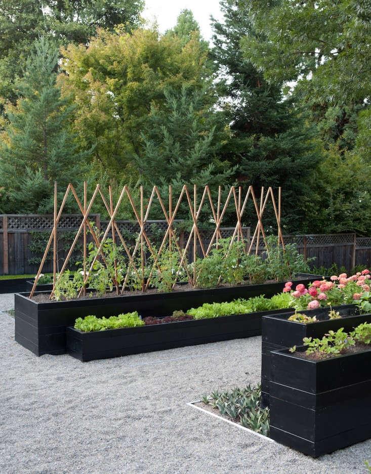 The New Vegetable Garden 13 Favorite Edible Backyards