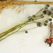 Kubik-140701-Petaler_092-Gardenista