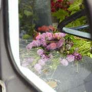 Kubik-140701-Petaler_112-Gardenista