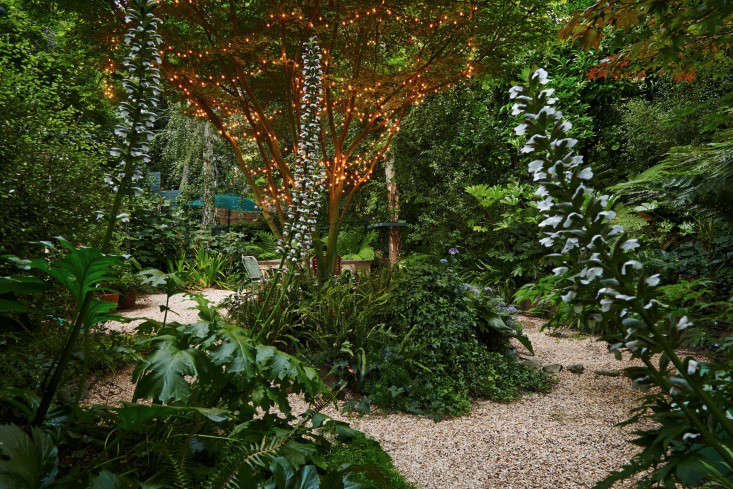 Leis Landscaping Yard : Garden visit starry nights and string lights in northern