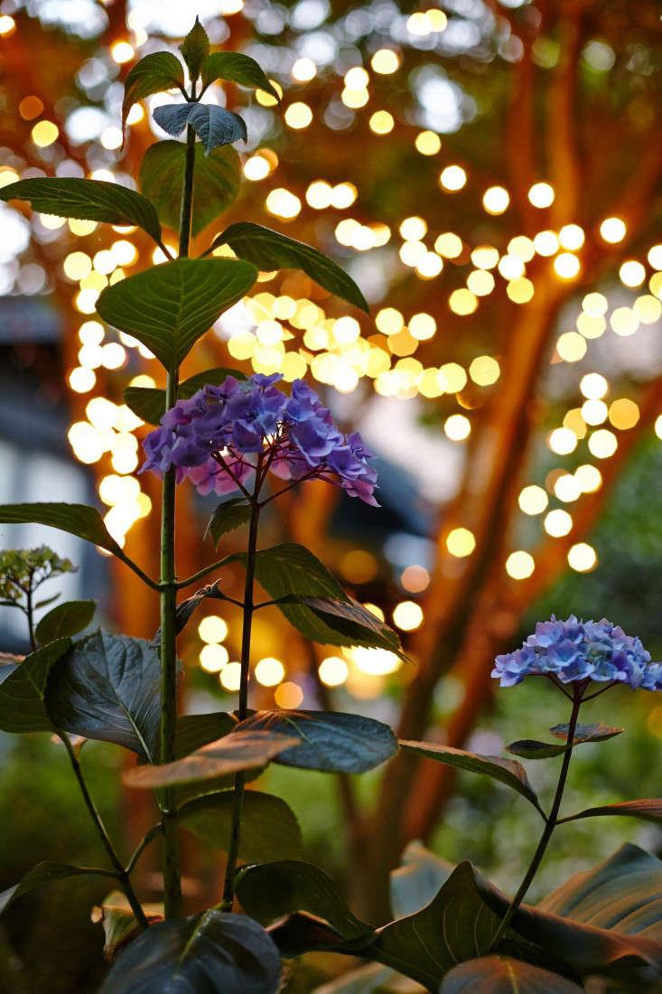 Kubik-marni-leis-Gardenista_18