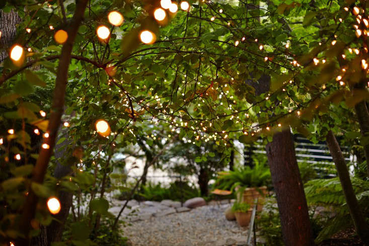 Garden Visit: Starry Nights and String Lights in Northern California: Gardenista