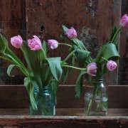Longest-Lasting-Spring-Flowers-Tulips-Day-1-2-Gardenista
