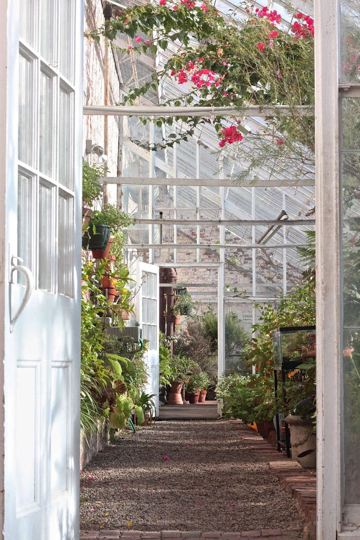 Lyman Estate Greenhouses, entrance citrus house 2
