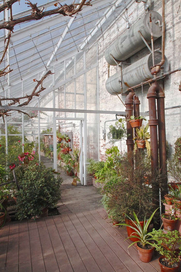 Lyman Estate Greenhouses, pipes grape house 2