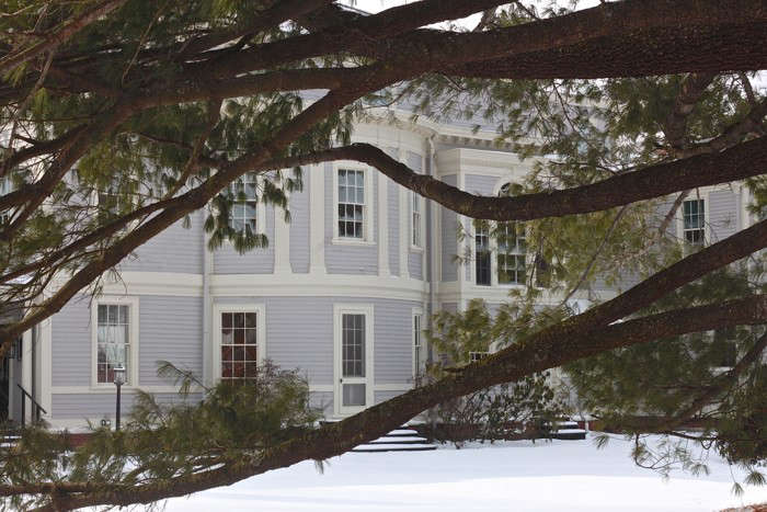 Lyman Estate, white pine, Gardenista