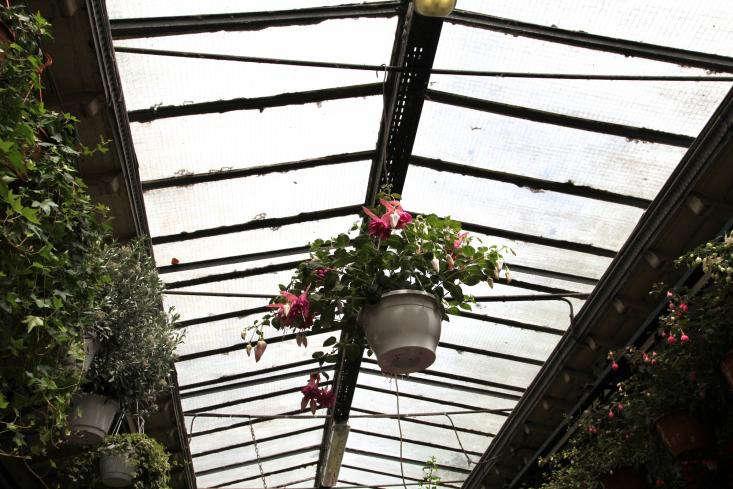 Marche-aux-Fleurs-Gardenista-01