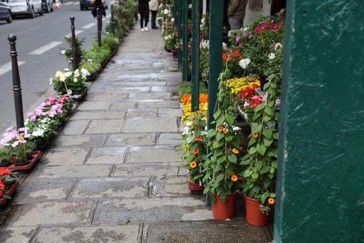 Marche-aux-Fleurs-Gardenista-14