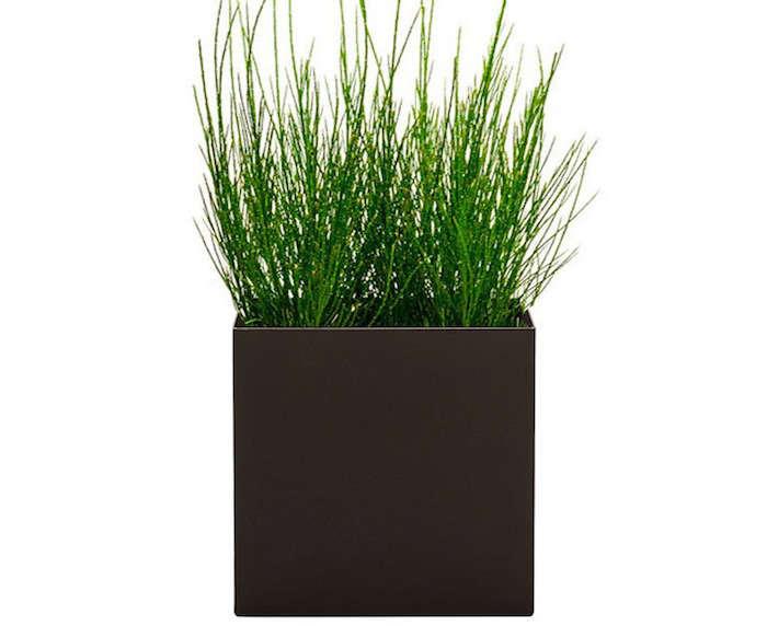 Modern-Bronze-Cube-Planter-Gardenista