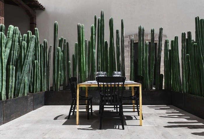Montero-Terrace