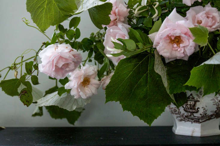 New Dawn Rose Bouquet, detail left, by Justine Hand for Gardenista