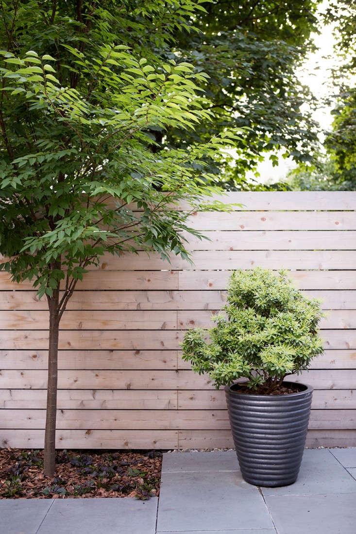 New-Eco-Landscapes-Bed-Stuy1-planter-Gardenista