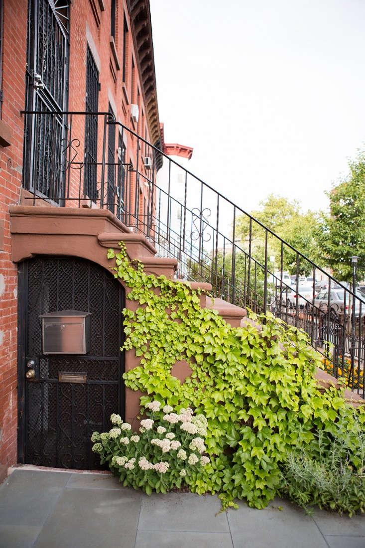 New-Eco-Landscapes-Bed-Stuy11-stoop-Gardenista
