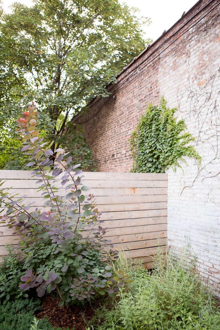 New-Eco-Landscapes-Bed-Stuy2-fence-Gardenista