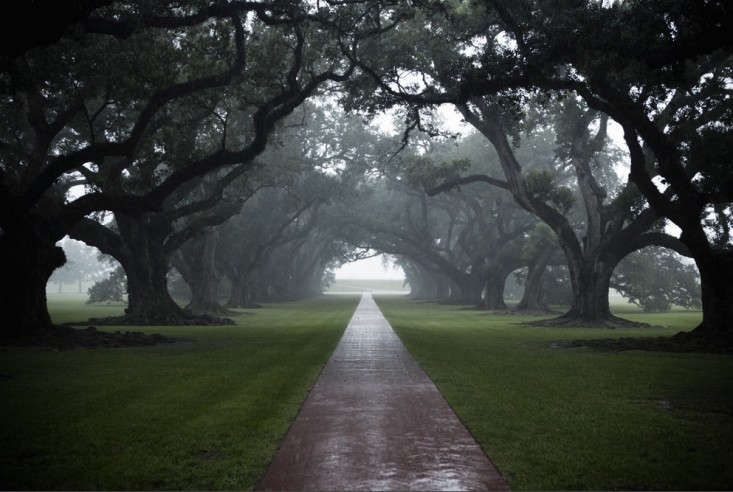 The Vampire Diaries A Plantation Haunted By History