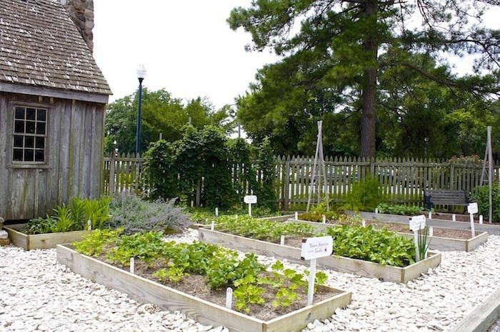 Oyster-Shell-Garden-Paths-Image-FigsFlowersFood-Gardenista