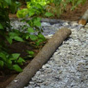 Oyster-Shell-Path-log
