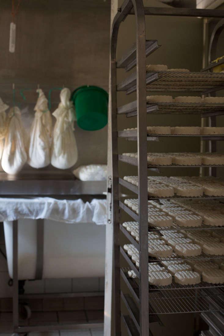 Pas-de-Blenacs-cheese-france-mimi-giboin-gardenista-36