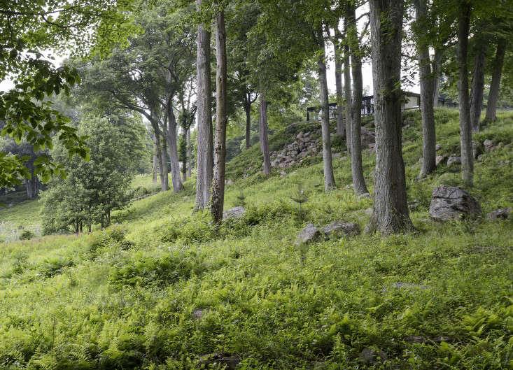 Philip-Johnson-glass-house-woods-gardenista