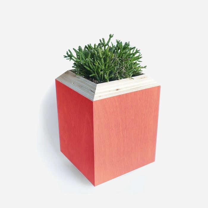 PlanterBoxSalmon
