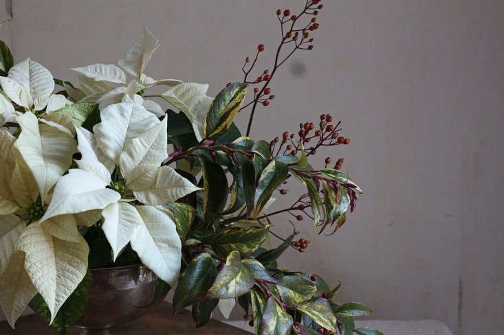 Poinsettia bouquet with rose hips, finished arrangement detail, by Justine Hand for Gardenist