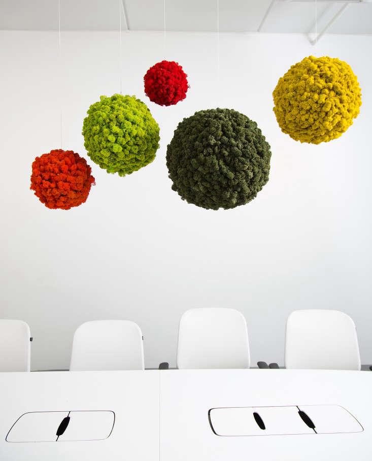 Polar-Moss-Spheres-Gardenista