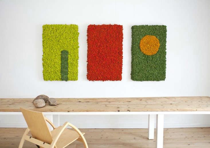 Polar-Moss-wall-installations-Gardenista
