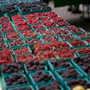 Portland-Farmers-Market_Michael-A-Muller-berries and currants