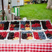 Portland-Farmers-Market_Michael-A-Muller-mixed berry boxes