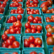 Portland-Farmers-Market_Michael-A-Muller-tomatoes