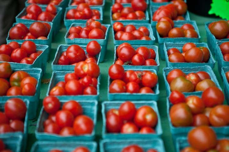Portland-Farmers-Market_Michael-A-Muller-tomatoes