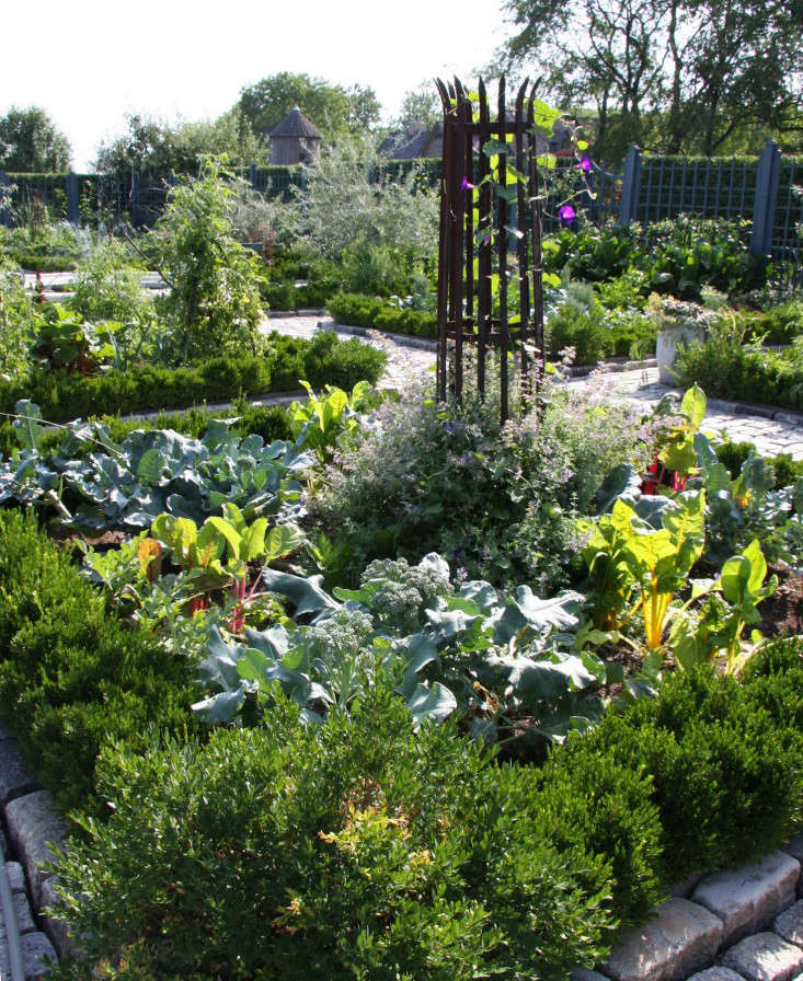 Potager-crowded-bed-AFilippone-gardenista