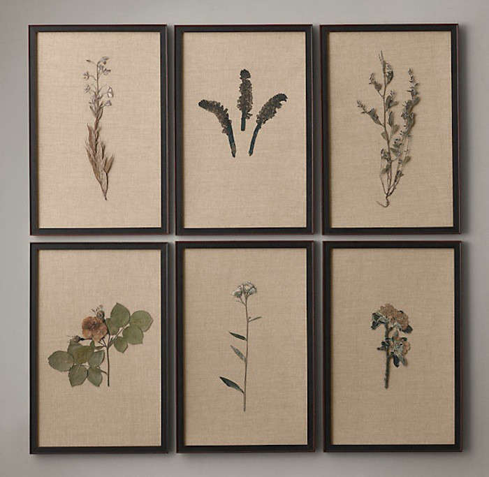 Pressed Botanical Art on Linen from Restoration Hardware l Gardenista