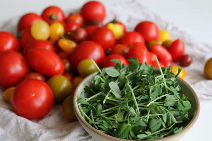 Recipe-from-the-garden-early-fall-dinner-party-menu-Gardenista-1