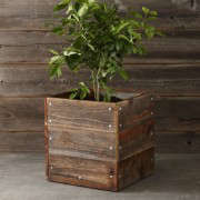 Reclaimed-Square-Wood-Planter-Gardenista
