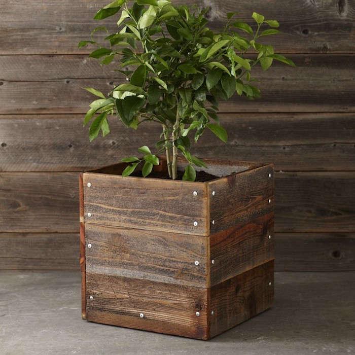 Reclaimed-Square-Wood-Planter-Gardenista