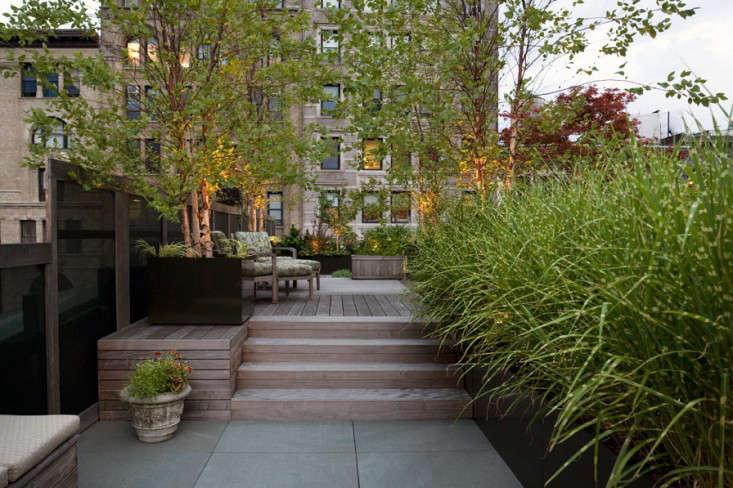 Hardscaping 101 Landscape Uplighting Gardenista