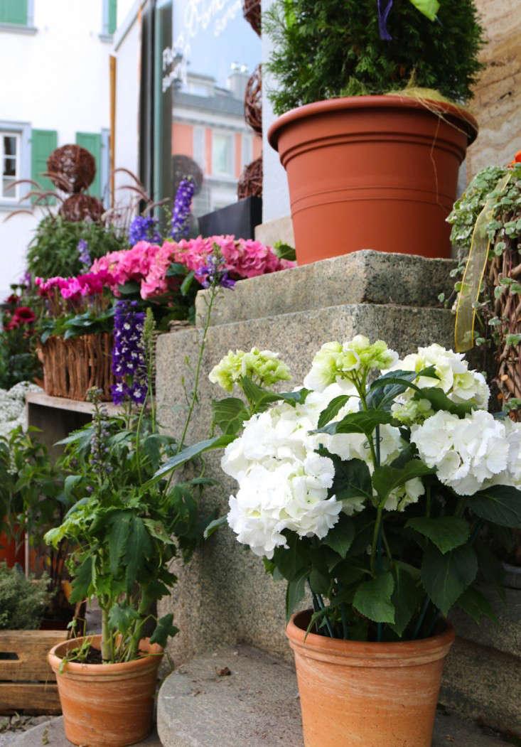 Samedan-Switzerland-Flower-Shop-Gardenista-5