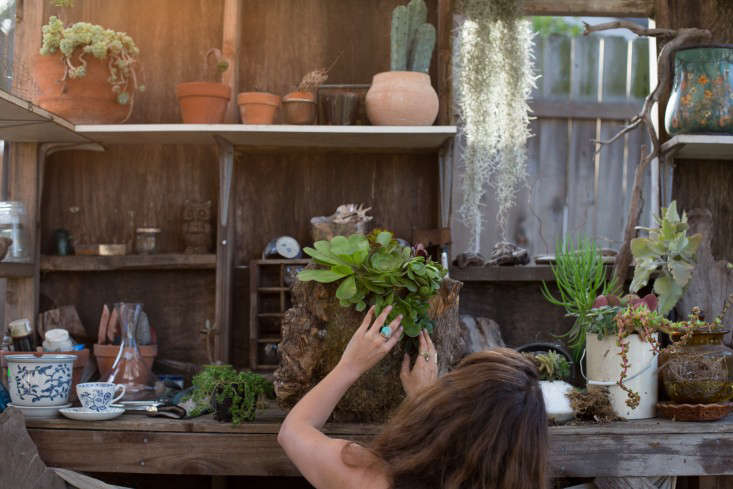 Searoon-1-Mimi-Giboin-Gardenista