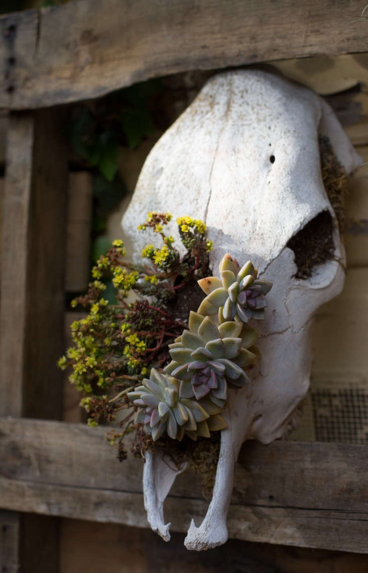 Searoon-15-Mimi-Giboin-Gardenista